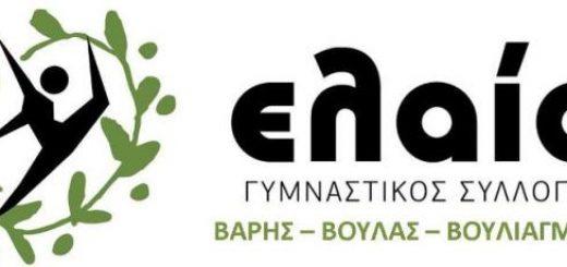 Ελαία Logo 01